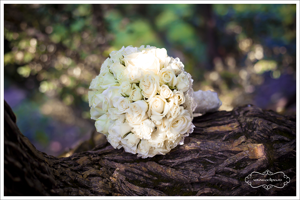 fotografii-nunta-28