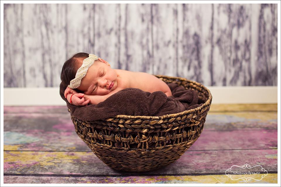 sedinte foto nou nascuti 4