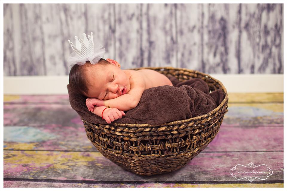 sedinte foto nou nascuti 5