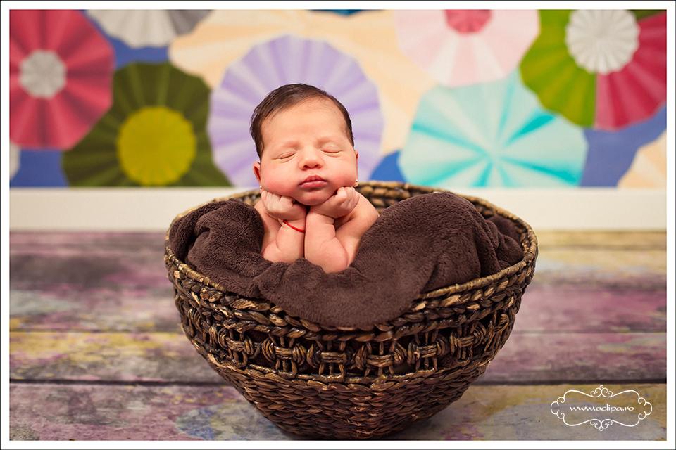 sedinte foto nou nascuti 6