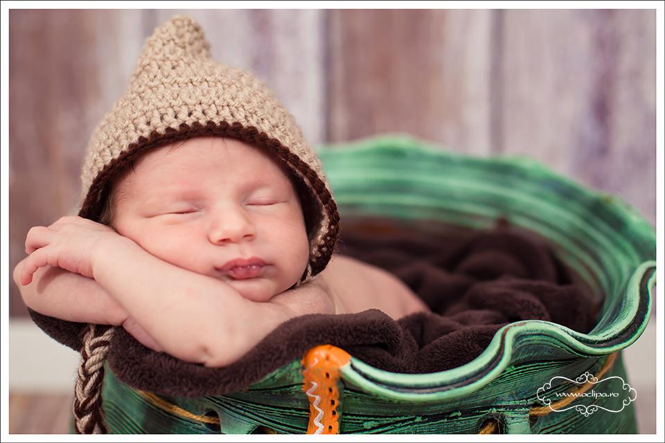 sedinte foto nou nascuti 7