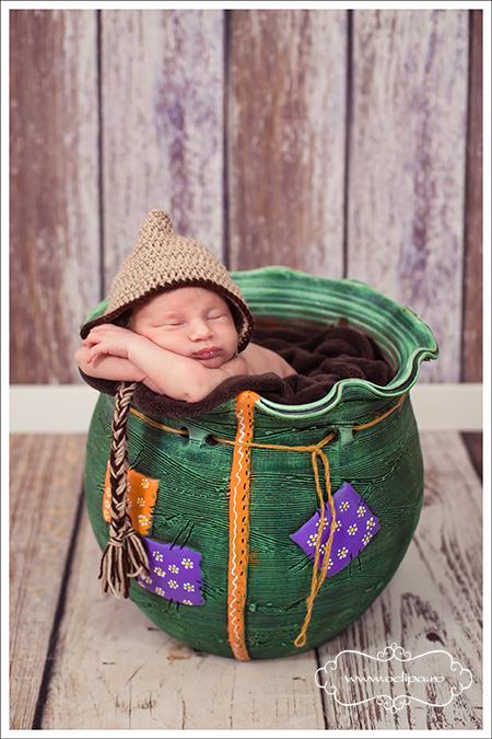 sedinte foto nou nascuti 8