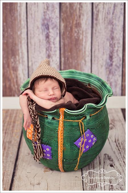sedinte foto nou nascuti 9