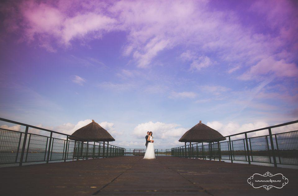 Fotograf nunta (48)