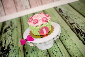 Smash The Cake 10